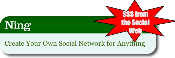 Ning: Making Money from Social Networking